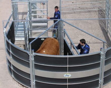 IAE PORTABLE ROTEX CATTLE HANDLING SYSTEM-0