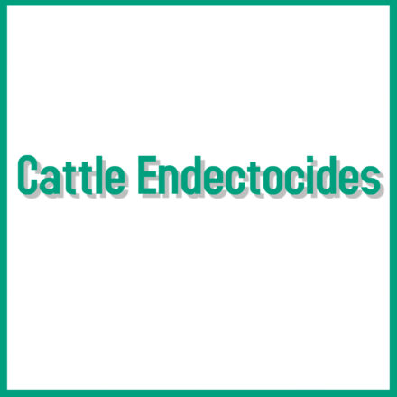 Cattle Endectocides