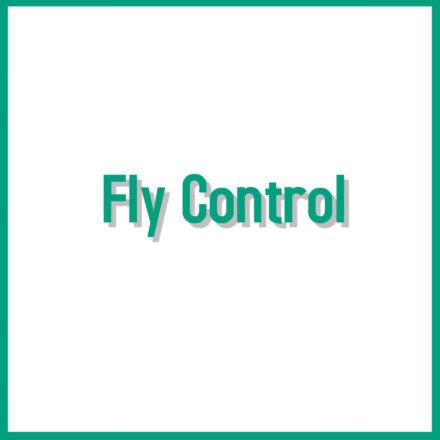 Sheep Fly Control